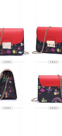 Hualong Cute Printed Shining Chain Ladies Side Purse