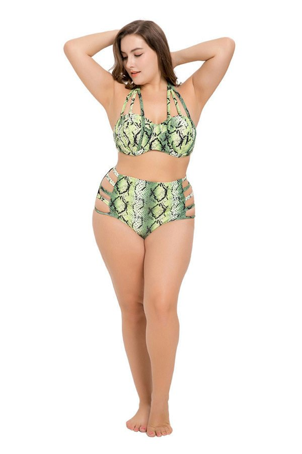 Hualong Sexy Green Printed Plus Size Halter Two Piece Swimsuit